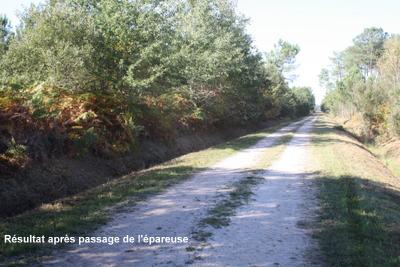 Sylviculteur en Gironde, DANIEL HOSTEIN